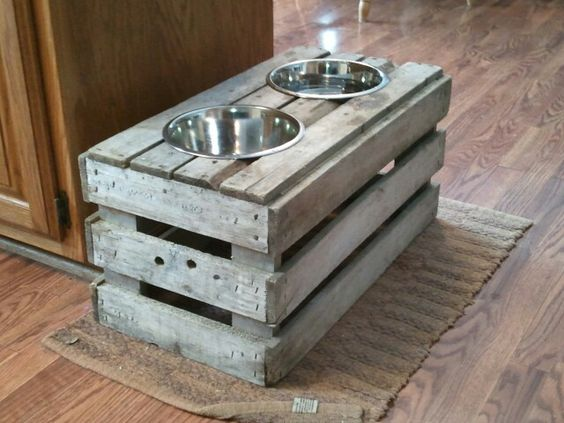 10 Ridiculously Easy DIY Pet Food Stand Projects  Pet Food Stand Projects, Pet Food Stand, DIY Pet Stand, Easy Pet Stand Projects, Projects for Pets, Pet Hacks, Tips and Tricks for Pet Owners, Popular Pin