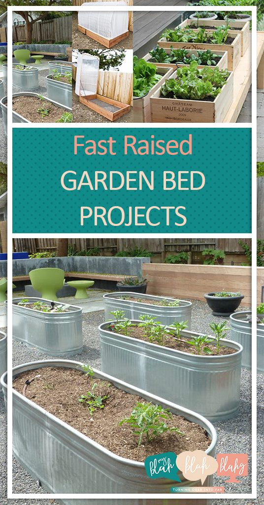 Fast Raised Garden Bed Projects  Raised Garden Beds, Raised Garden Bed Projects, Gardening, Gardening Hacks, DIY Raised Garden Bed, Make Your Own Raised Garden Beds, Simple Raised Garden Beds, Popular Pin