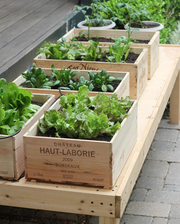 Fast Raised Garden Bed Projects| Raised Garden Beds, Raised Garden Bed Projects, Gardening, Gardening Hacks, DIY Raised Garden Bed, Make Your Own Raised Garden Beds, Simple Raised Garden Beds, Popular Pin