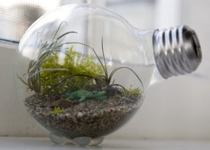 15 Seriously Genius Ways to Reuse Old Lightbulbs| How to Reuse Lightbulbs, Reusing Lightbulbs, Recycling Projects, Repurpose Projects, How to Recycle Lightbulbs, Repurpose Projects, Popular Pin