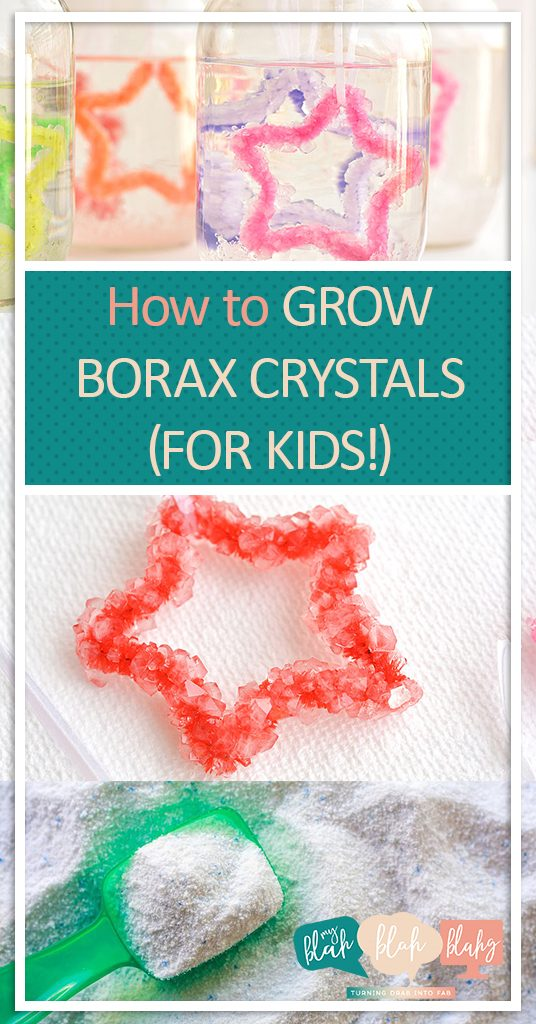 How to Grow Borax Crystals, Borax Crystal Crafts for Kids, Crafts for Kids, Easy Crafts for Kids, Science Experiment Projects for Kids, How to Make Crystals Using Borax, Popular Pin