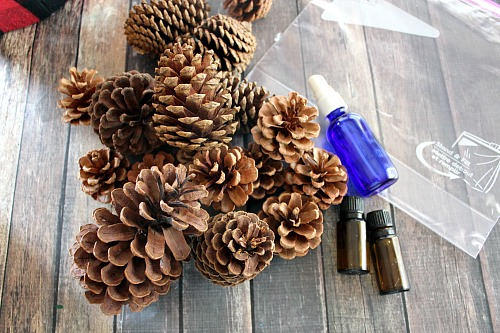 How to Make Scented Pinecones for Christmas| Christmas, Christmas Crafts, DIY Holiday, Holiday Crafts, Holiday Home Decor, DIY Christmas, Popular Pin #DIYHoliday #ChristmasCrafts
