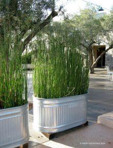 10 DIY Projects for A Backyard Renovation  Backyard Ideas, Backyard Renovation Ideas, Patio Ideas, Patio Ideas on a Budget, DIY Projects