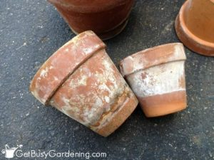 How to Clean Dirty Terracotta Pots| Terra Cotta Pots, Cleaning Dirty Terra Cotta Pots, Cleaning Hacks, Cleaning Tips, Cleaning Tips and Tricks, How To Clean Terracotta Pots