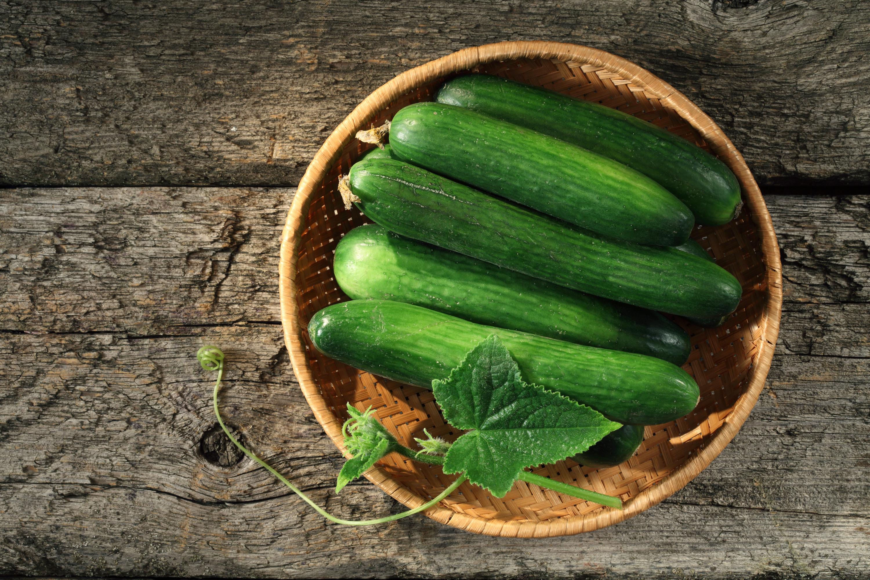 cucumbers | life tricks | life hacks | life tips and tricks | life tips | tips and tricks | benefits of cucumbers