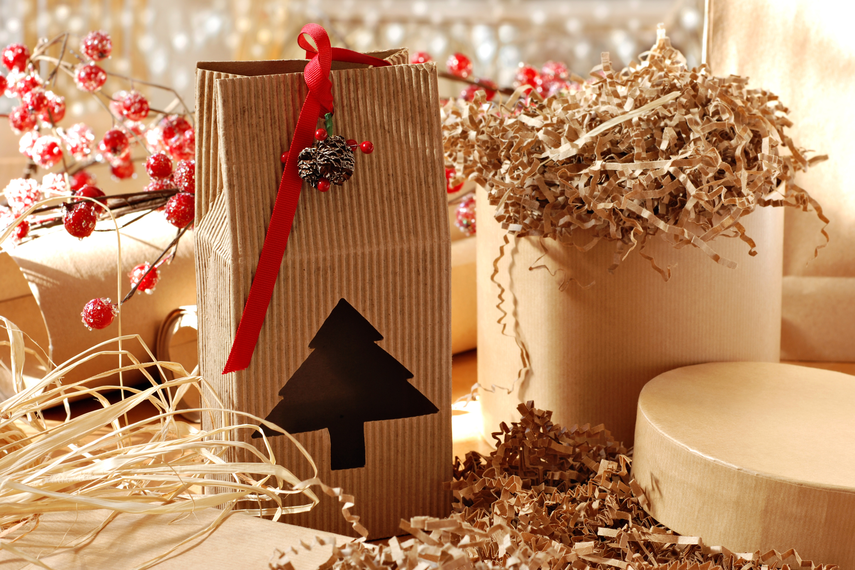 Christmas paper bag gift with tree cutout and red ribbon.