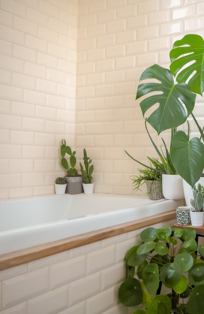 Live plants will always help your bathroom feel like a spa! With a few of these zen bathroom ideas, your bathroom will be the calmest room in your house.