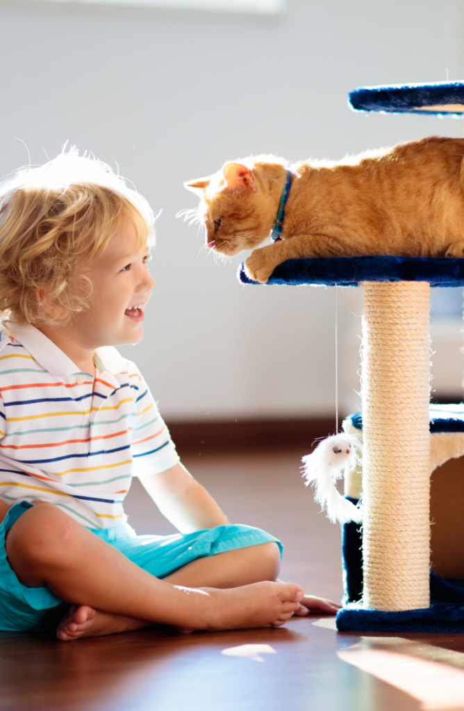 Whether you have a boy, a girl, a calico, or are just looking for some cute kitten names, we've got you covered. Your kid will love playing with your kitty!