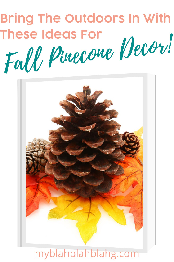 Fall is my favorite time of year. I love to incorporate fall pinecone decor in my home. It's a natural look and feel that brings the outdoors in. Who doesn't love the cooler days? Why not bring a touch of that inside? Keep reading for more info. #fallpineconedecor #homedecorideas #naturalhomedecor #myblahblahblahgblog