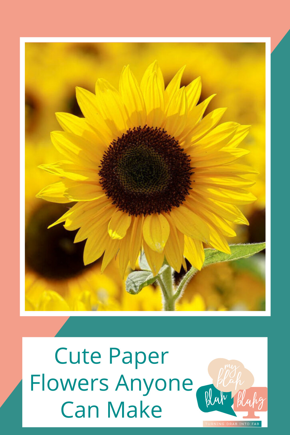 Myblahblahblahg.com has fun ideas for every season! Get ready for the warmer months with cheery florals and inspired projects! These DIY paper flowers are fun to make and beautiful to look at!